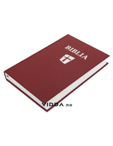 Biblia NTR Visinie Cartonata